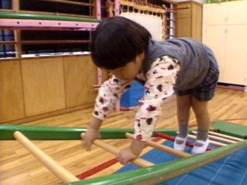 障害をもつ子どもの発達臨床