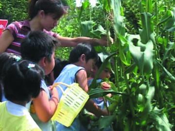 子どもを育む保育の環境
