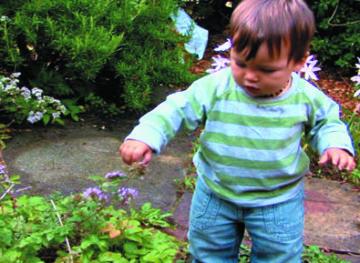 子どもを屋外へ −遊び・学習・発達−